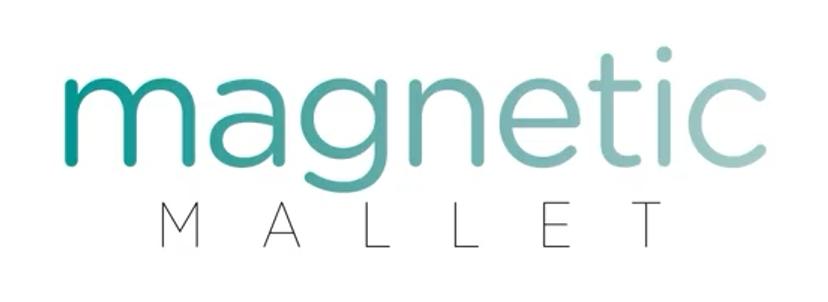 Magnetic Mallet